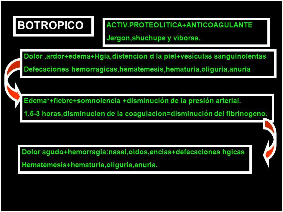 BOTROPICO Dolor,ardor+edema+Hgia,distencion d la piel+vesículas sanguinolentas Defecaciones hemorragicas,hematemesis,hematuria,oliguria,anuria Edema*+fiebre+somnolencia +disminución de la presión arterial.