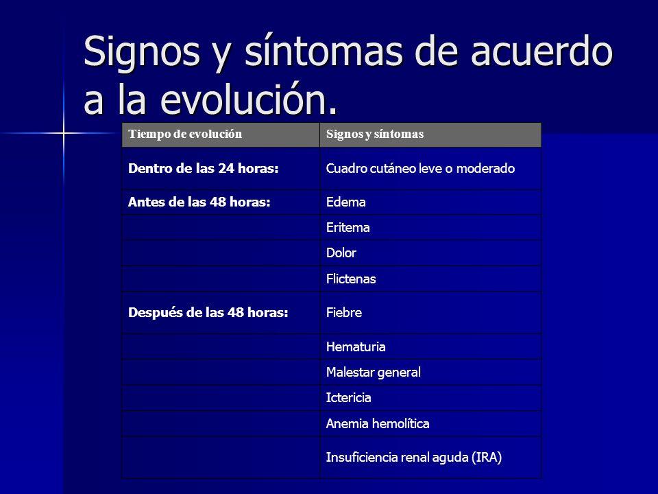 Signos y síntomas de acuerdo a la evolución. Tiempo de evoluciónSignos y síntomas Dentro de las 24 horas:Cuadro cutáneo leve o moderado Antes de las 4