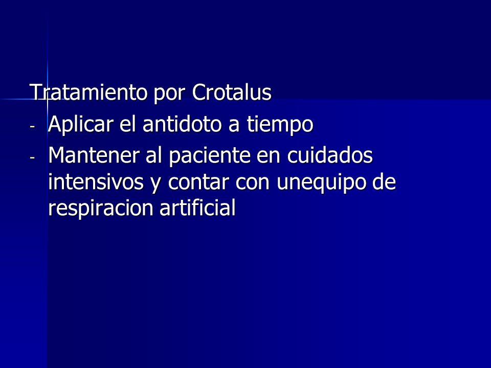 Tratamiento por Crotalus - Aplicar el antidoto a tiempo - Mantener al paciente en cuidados intensivos y contar con unequipo de respiracion artificial