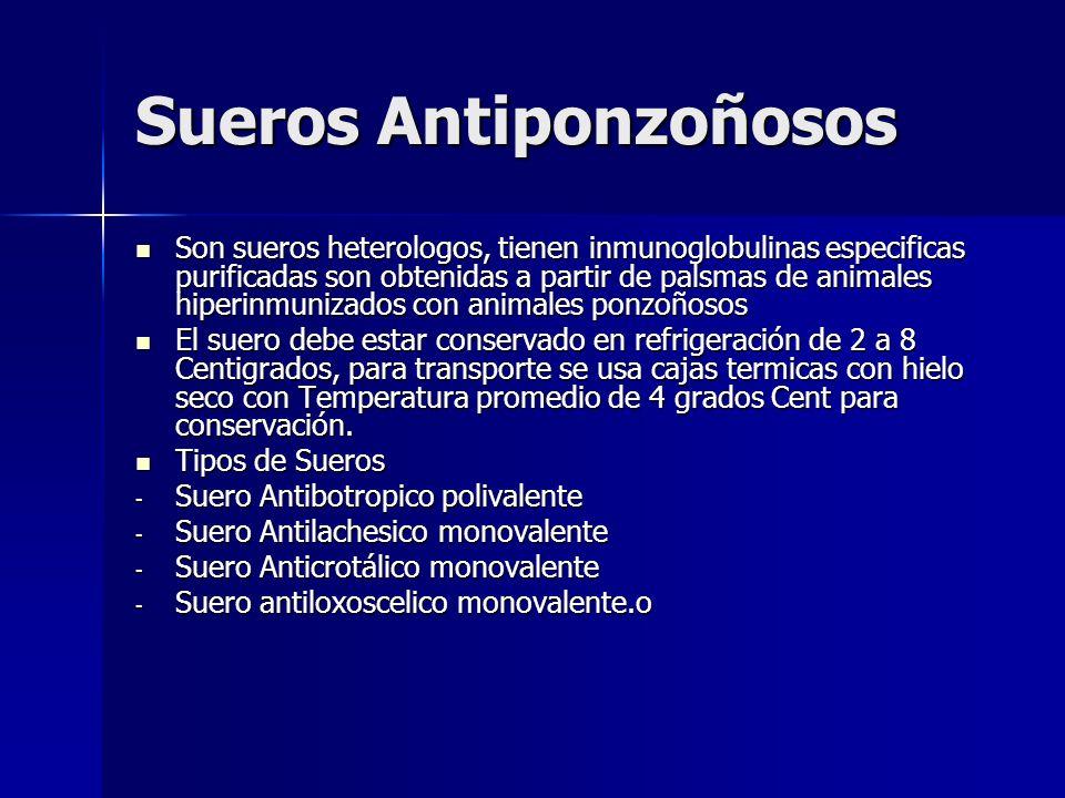Sueros Antiponzoñosos Son sueros heterologos, tienen inmunoglobulinas especificas purificadas son obtenidas a partir de palsmas de animales hiperinmun