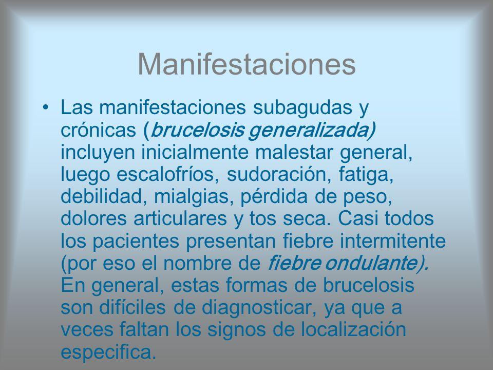 Manifestaciones Las manifestaciones subagudas y crónicas (brucelosis generalizada) incluyen inicialmente malestar general, luego escalofríos, sudoraci