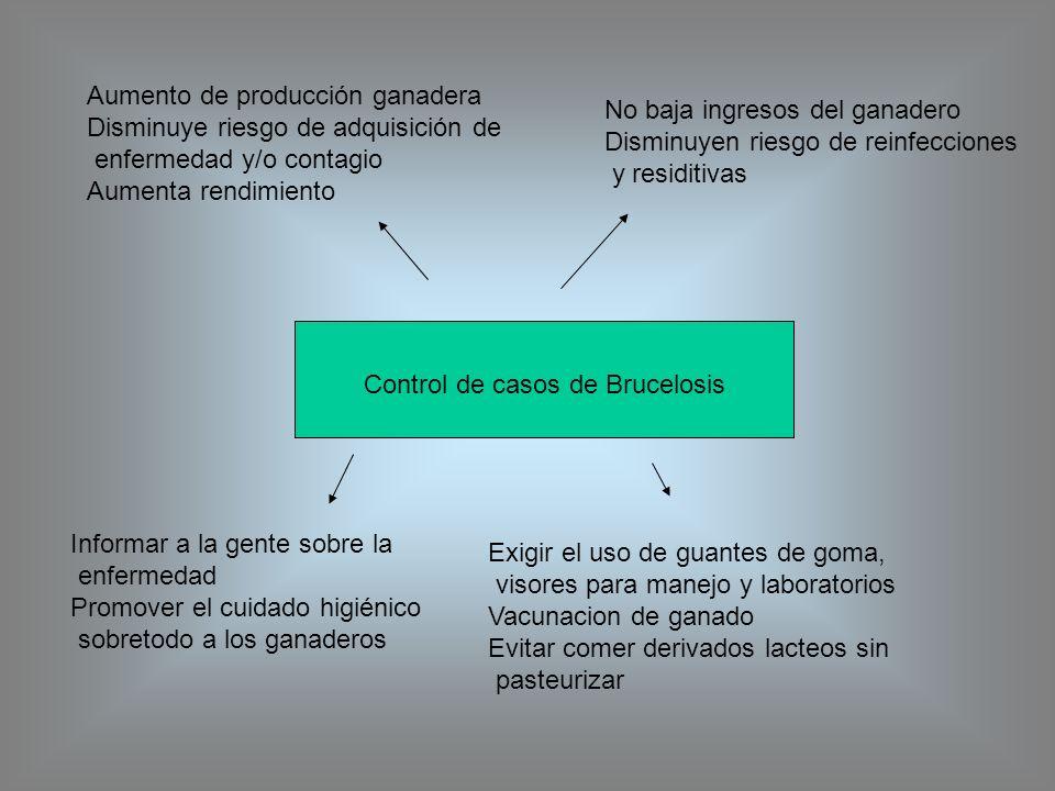 Control de casos de Brucelosis Informar a la gente sobre la enfermedad Promover el cuidado higiénico sobretodo a los ganaderos Exigir el uso de guante