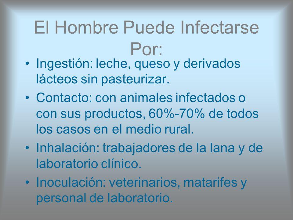 El Hombre Puede Infectarse Por: Ingestión: leche, queso y derivados lácteos sin pasteurizar. Contacto: con animales infectados o con sus productos, 60