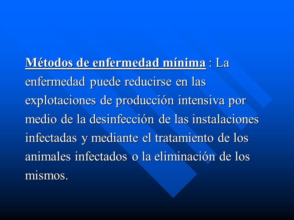 Métodos de enfermedad mínima : La enfermedad puede reducirse en las explotaciones de producción intensiva por medio de la desinfección de las instalac