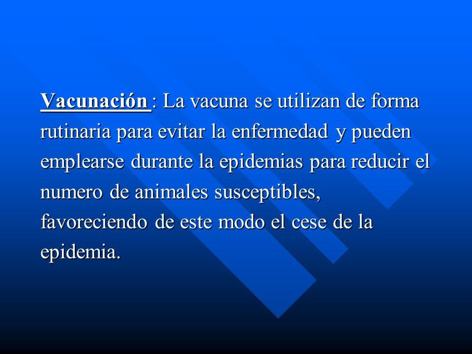 Vacunación : La vacuna se utilizan de forma rutinaria para evitar la enfermedad y pueden emplearse durante la epidemias para reducir el numero de anim