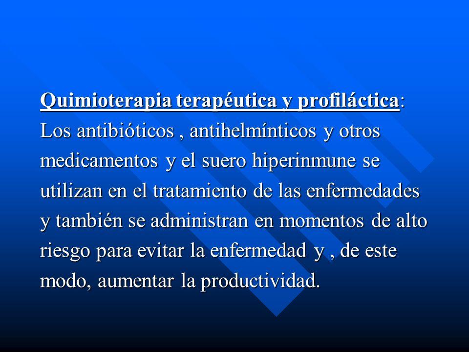 Quimioterapia terapéutica y profiláctica: Los antibióticos, antihelmínticos y otros medicamentos y el suero hiperinmune se utilizan en el tratamiento