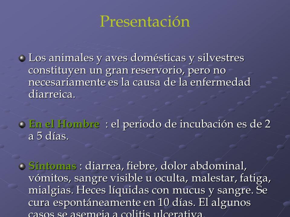 Presentación Los animales y aves domésticas y silvestres constituyen un gran reservorio, pero no necesariamente es la causa de la enfermedad diarreica