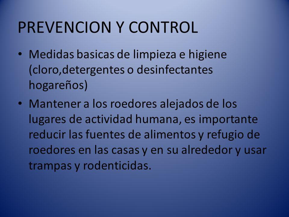 PREVENCION Y CONTROL Medidas basicas de limpieza e higiene (cloro,detergentes o desinfectantes hogareños) Mantener a los roedores alejados de los luga