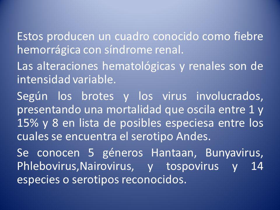 Estos producen un cuadro conocido como fiebre hemorrágica con síndrome renal. Las alteraciones hematológicas y renales son de intensidad variable. Seg