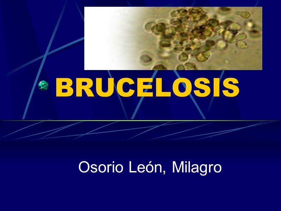 La brucelosis humana es, en gran parte, una enfermedad ocupacional de obreros pecuarios, personal de mataderos, matarifes, carniceros y médicos veterinarios.