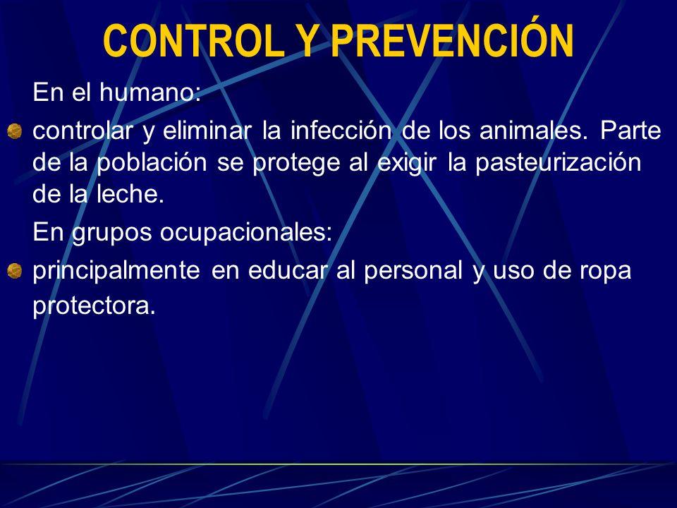 CONTROL Y PREVENCIÓN En el humano: controlar y eliminar la infección de los animales. Parte de la población se protege al exigir la pasteurización de