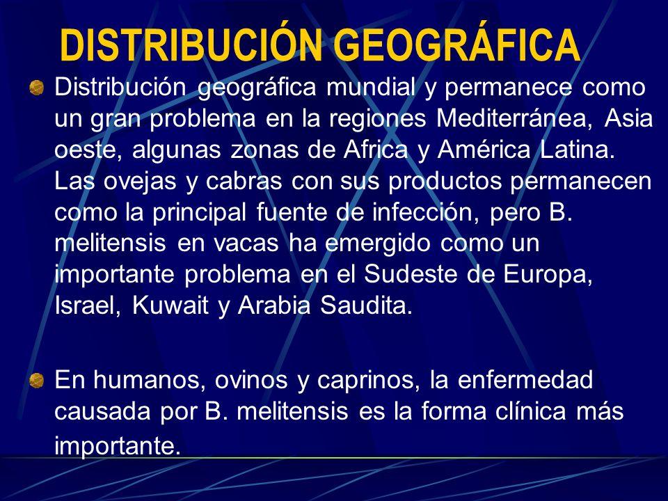 DISTRIBUCIÓN GEOGRÁFICA Distribución geográfica mundial y permanece como un gran problema en la regiones Mediterránea, Asia oeste, algunas zonas de Af