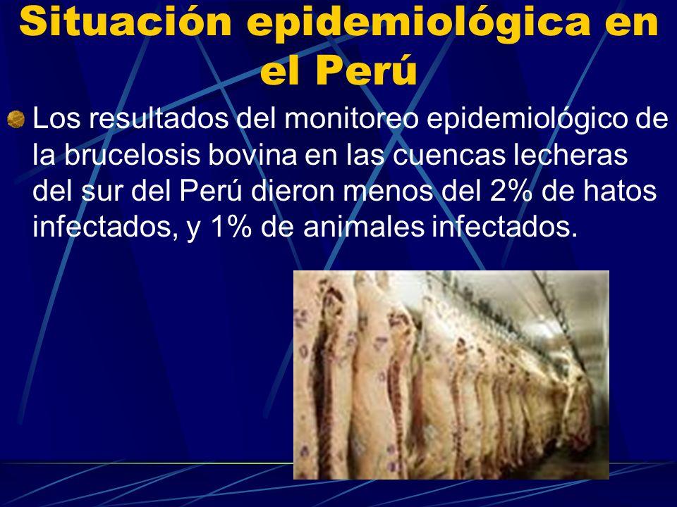 Situación epidemiológica en el Perú Los resultados del monitoreo epidemiológico de la brucelosis bovina en las cuencas lecheras del sur del Perú diero