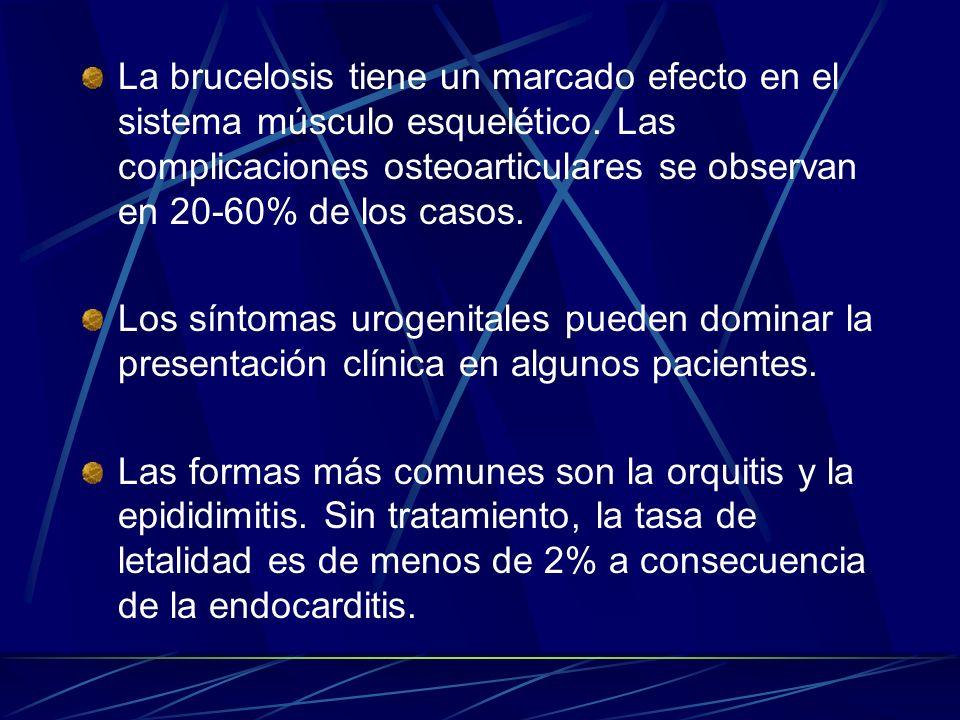La brucelosis tiene un marcado efecto en el sistema músculo esquelético. Las complicaciones osteoarticulares se observan en 20-60% de los casos. Los s