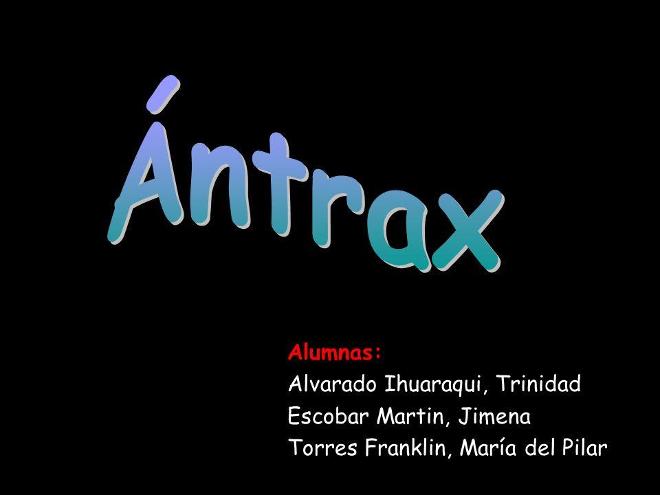 Alumnas: Alvarado Ihuaraqui, Trinidad Escobar Martin, Jimena Torres Franklin, María del Pilar