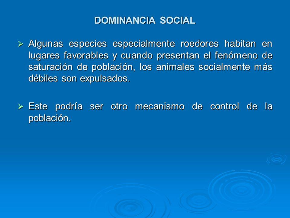 DOMINANCIA SOCIAL Algunas especies especialmente roedores habitan en lugares favorables y cuando presentan el fenómeno de saturación de población, los