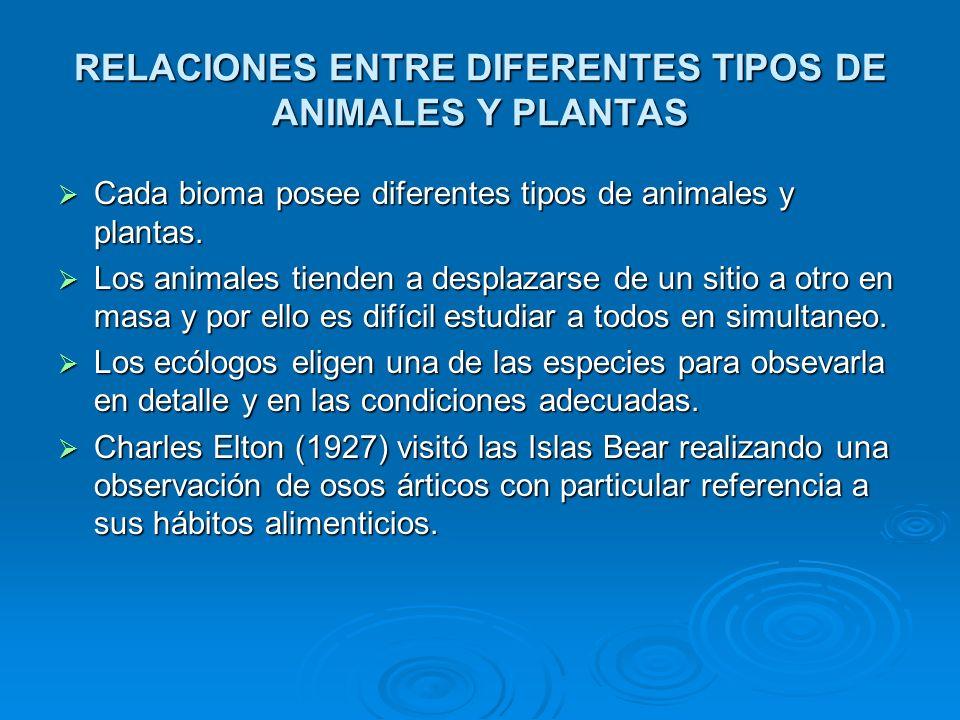 RELACIONES ENTRE DIFERENTES TIPOS DE ANIMALES Y PLANTAS Cada bioma posee diferentes tipos de animales y plantas. Cada bioma posee diferentes tipos de