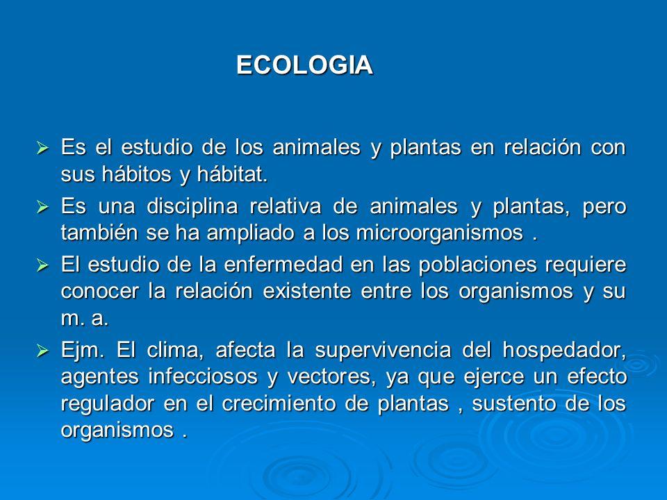 Es el estudio de los animales y plantas en relación con sus hábitos y hábitat. Es el estudio de los animales y plantas en relación con sus hábitos y h