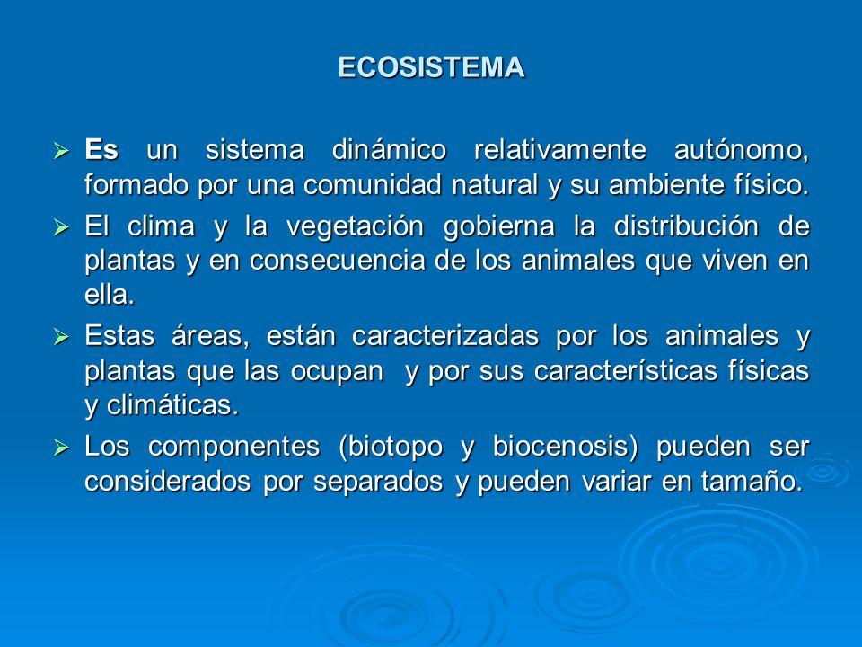 ECOSISTEMA Es un sistema dinámico relativamente autónomo, formado por una comunidad natural y su ambiente físico. Es un sistema dinámico relativamente