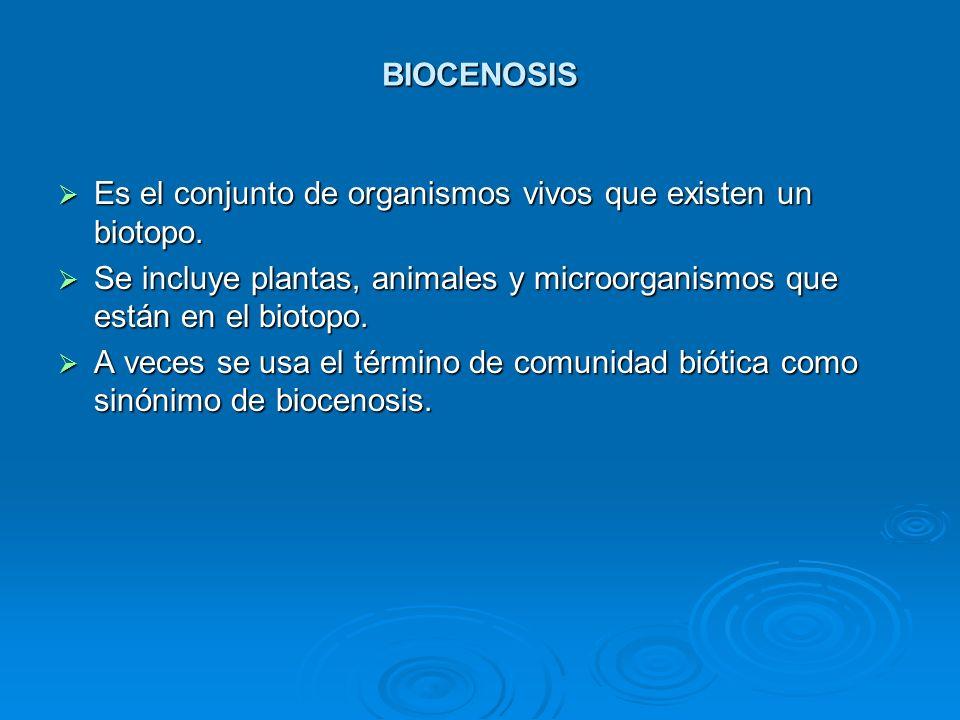 BIOCENOSIS Es el conjunto de organismos vivos que existen un biotopo. Es el conjunto de organismos vivos que existen un biotopo. Se incluye plantas, a