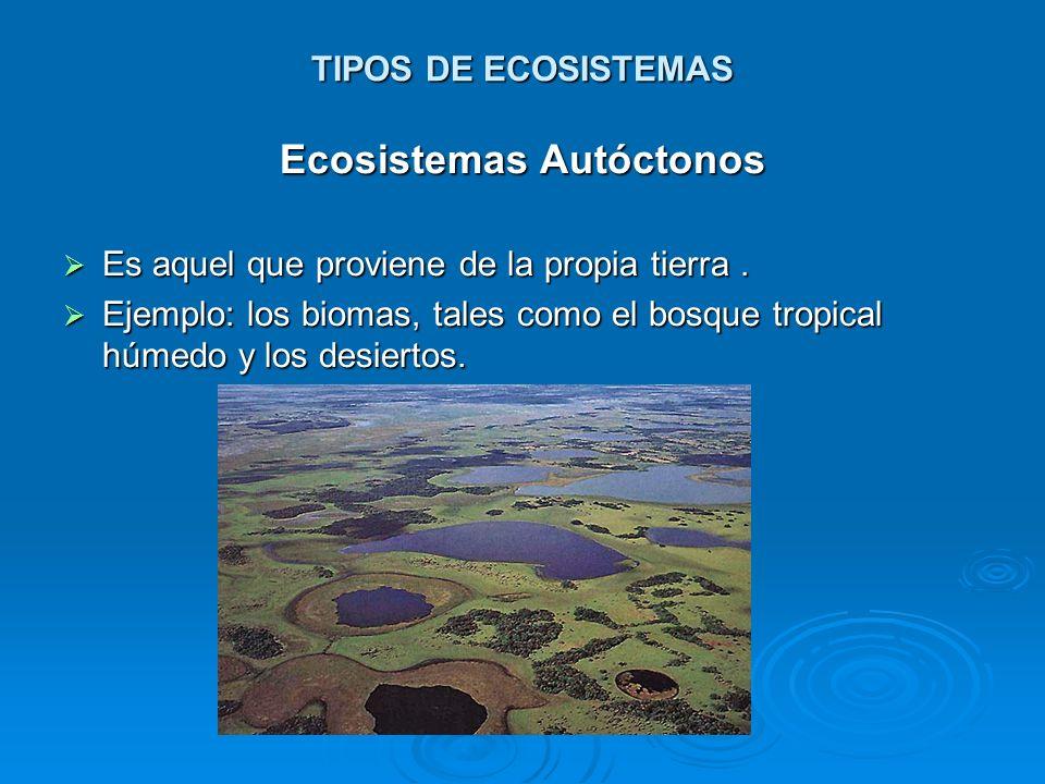 TIPOS DE ECOSISTEMAS Ecosistemas Autóctonos Es aquel que proviene de la propia tierra. Es aquel que proviene de la propia tierra. Ejemplo: los biomas,
