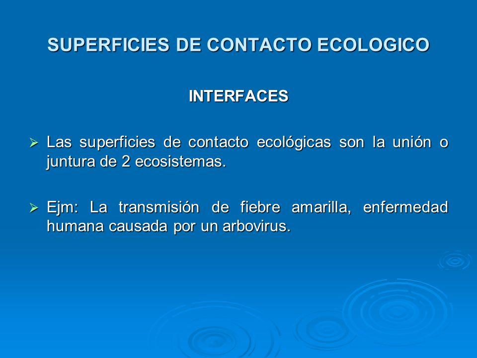 SUPERFICIES DE CONTACTO ECOLOGICO INTERFACES Las superficies de contacto ecológicas son la unión o juntura de 2 ecosistemas. Las superficies de contac