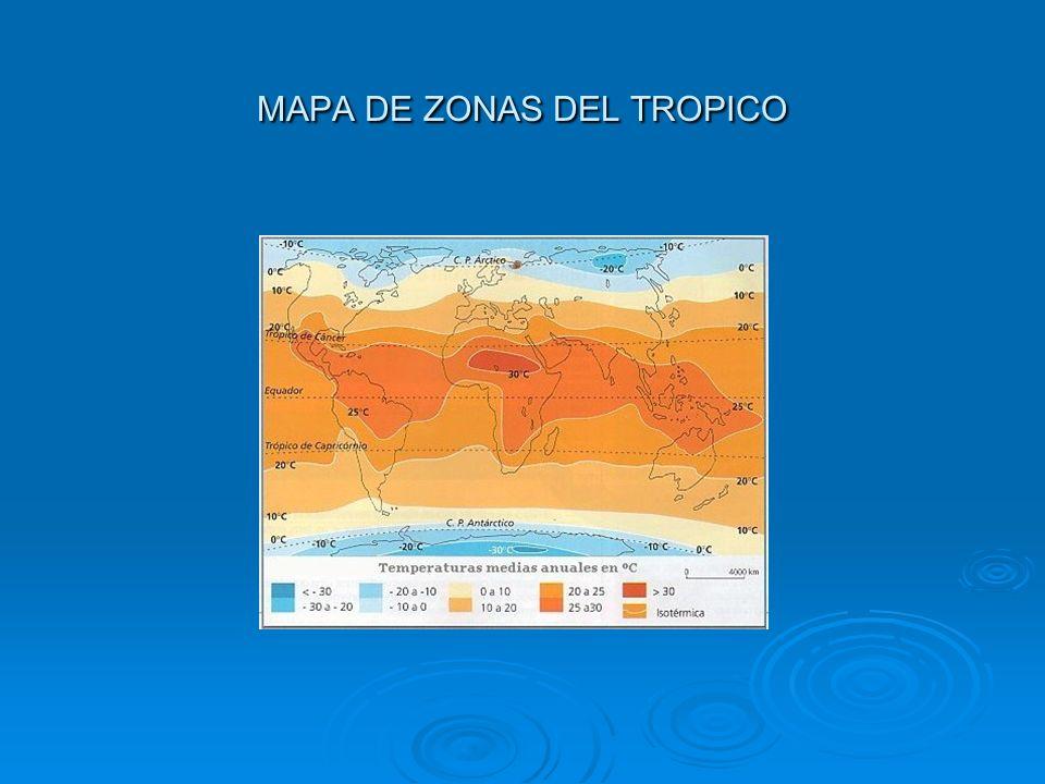 MAPA DE ZONAS DEL TROPICO