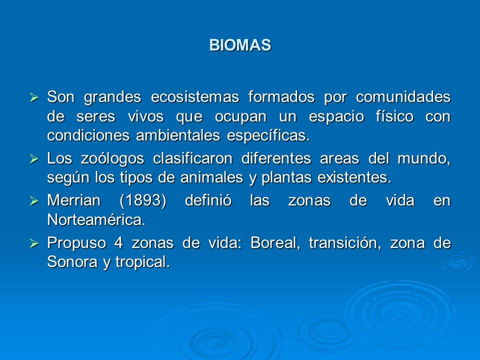 BIOMAS Son grandes ecosistemas formados por comunidades de seres vivos que ocupan un espacio físico con condiciones ambientales específicas. Son grand
