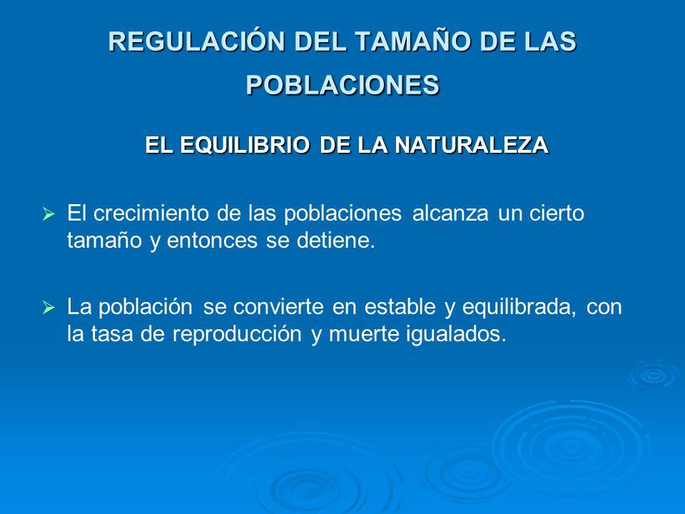 REGULACIÓN DEL TAMAÑO DE LAS POBLACIONES EL EQUILIBRIO DE LA NATURALEZA EL EQUILIBRIO DE LA NATURALEZA El crecimiento de las poblaciones alcanza un ci