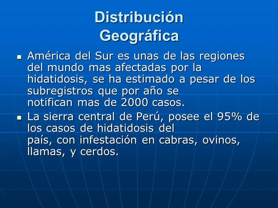 Distribución Geográfica América del Sur es unas de las regiones del mundo mas afectadas por la hidatidosis, se ha estimado a pesar de los subregistros