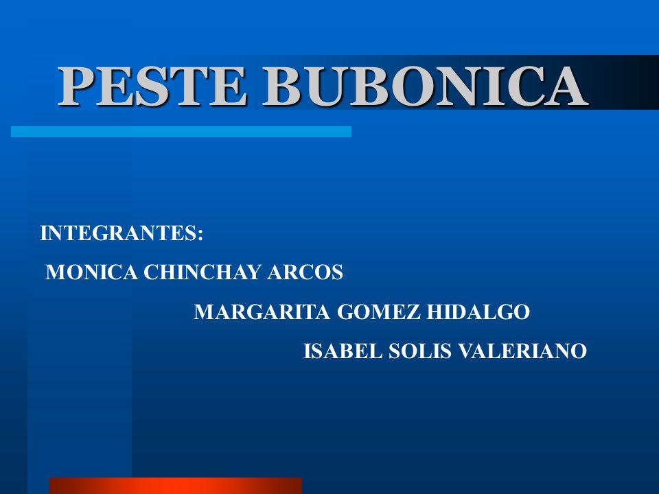 PESTE BUBONICA INTEGRANTES: MONICA CHINCHAY ARCOS MARGARITA GOMEZ HIDALGO ISABEL SOLIS VALERIANO