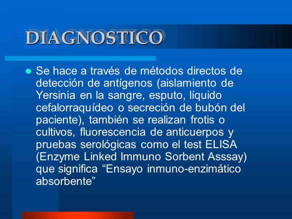 DIAGNOSTICODIAGNOSTICO Se hace a través de métodos directos de detección de antígenos (aislamiento de Yersinia en la sangre, esputo, líquido cefalorra