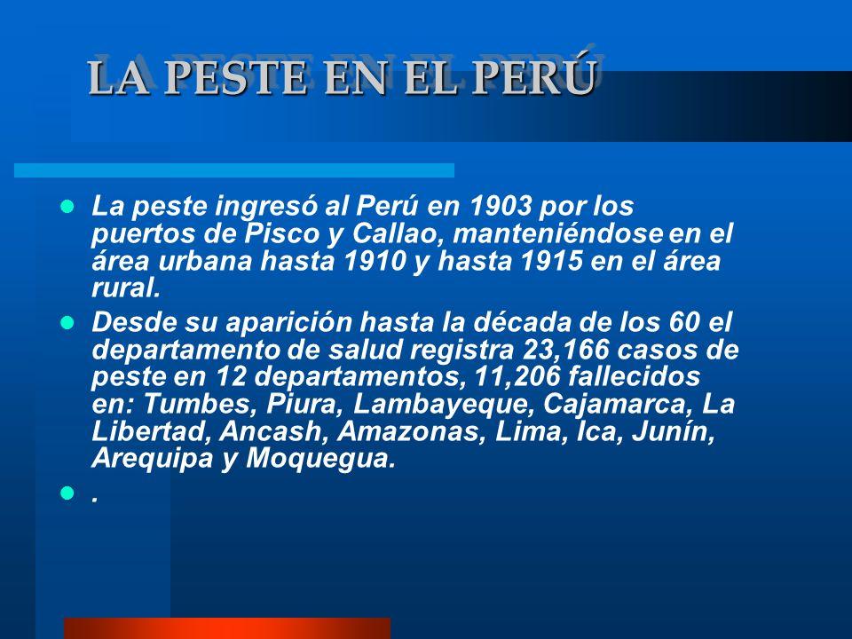 LA PESTE EN EL PERÚ La peste ingresó al Perú en 1903 por los puertos de Pisco y Callao, manteniéndose en el área urbana hasta 1910 y hasta 1915 en el