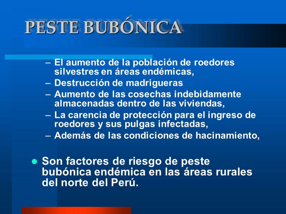 PESTE BUBÓNICA –El aumento de la población de roedores silvestres en áreas endémicas, –Destrucción de madrigueras –Aumento de las cosechas indebidamen