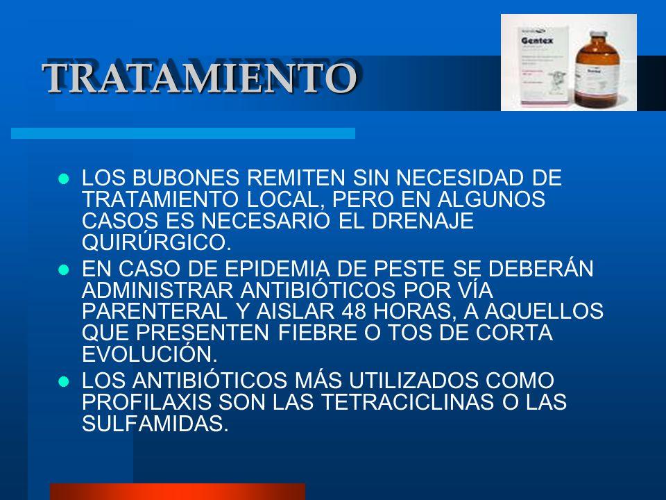 LOS BUBONES REMITEN SIN NECESIDAD DE TRATAMIENTO LOCAL, PERO EN ALGUNOS CASOS ES NECESARIO EL DRENAJE QUIRÚRGICO. EN CASO DE EPIDEMIA DE PESTE SE DEBE