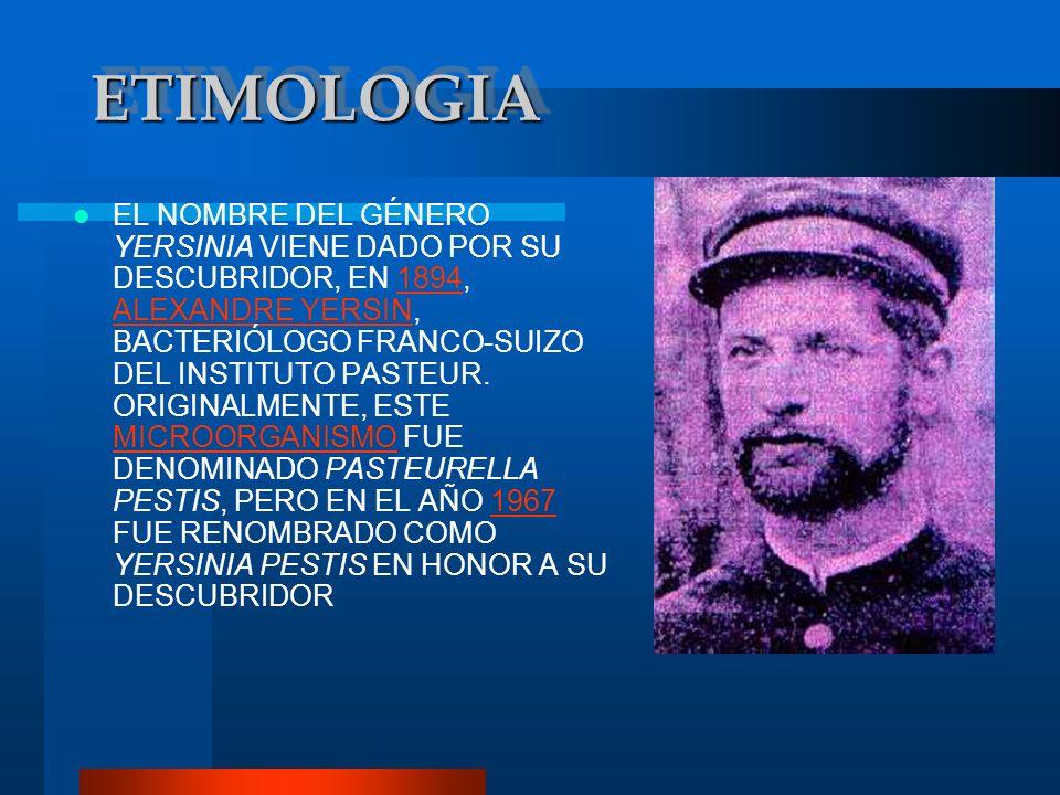 ETIMOLOGIAETIMOLOGIA EL NOMBRE DEL GÉNERO YERSINIA VIENE DADO POR SU DESCUBRIDOR, EN 1894, ALEXANDRE YERSIN, BACTERIÓLOGO FRANCO-SUIZO DEL INSTITUTO P