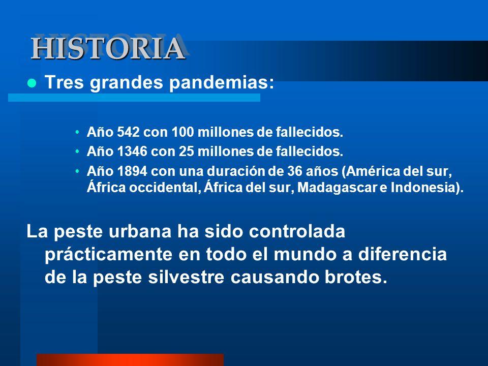 HISTORIAHISTORIA Tres grandes pandemias: Año 542 con 100 millones de fallecidos. Año 1346 con 25 millones de fallecidos. Año 1894 con una duración de