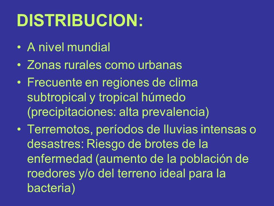 DISTRIBUCION: A nivel mundial Zonas rurales como urbanas Frecuente en regiones de clima subtropical y tropical húmedo (precipitaciones: alta prevalenc