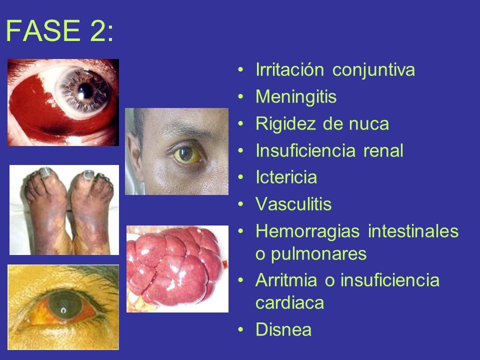 DIAGNOSTICO: Encefalitis, gripe, hepatitis y meningitis.