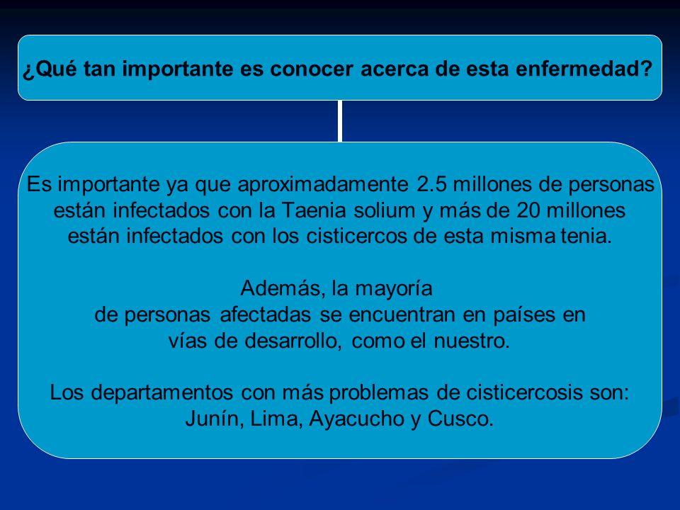 ¿Qué tan importante es conocer acerca de esta enfermedad? Es importante ya que aproximadamente 2.5 millones de personas están infectados con la Taenia