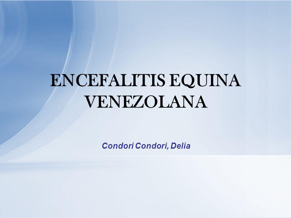 ENCEFALITIS EQUINA VENEZOLANA Condori Condori, Delia