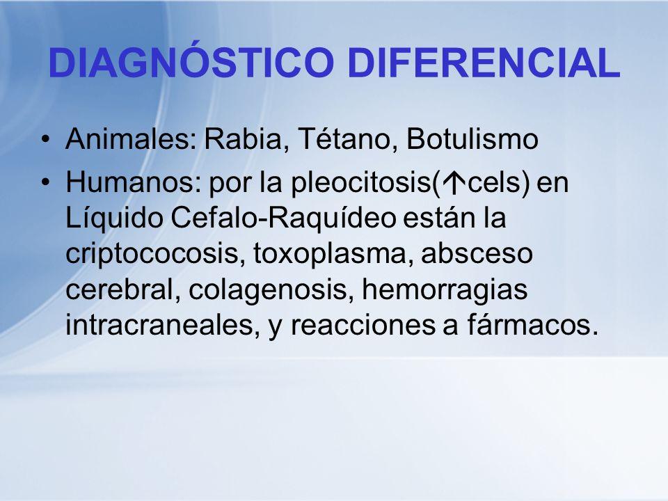 DIAGNÓSTICO DIFERENCIAL Animales: Rabia, Tétano, Botulismo Humanos: por la pleocitosis( cels) en Líquido Cefalo-Raquídeo están la criptococosis, toxop