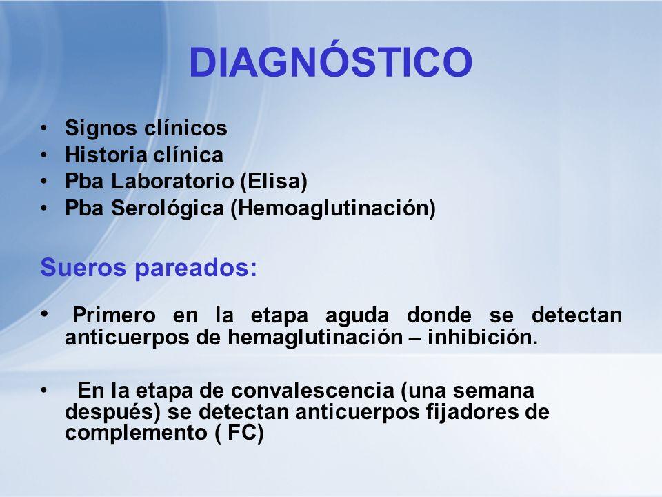 DIAGNÓSTICO Signos clínicos Historia clínica Pba Laboratorio (Elisa) Pba Serológica (Hemoaglutinación) Sueros pareados: Primero en la etapa aguda dond