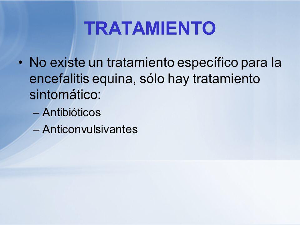 TRATAMIENTO No existe un tratamiento específico para la encefalitis equina, sólo hay tratamiento sintomático: –Antibióticos –Anticonvulsivantes