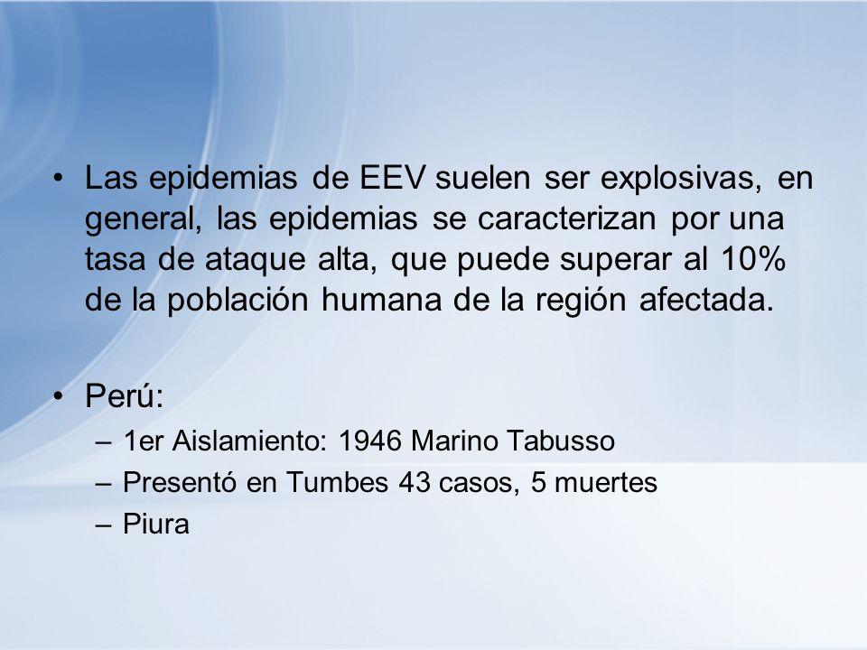 Las epidemias de EEV suelen ser explosivas, en general, las epidemias se caracterizan por una tasa de ataque alta, que puede superar al 10% de la pobl