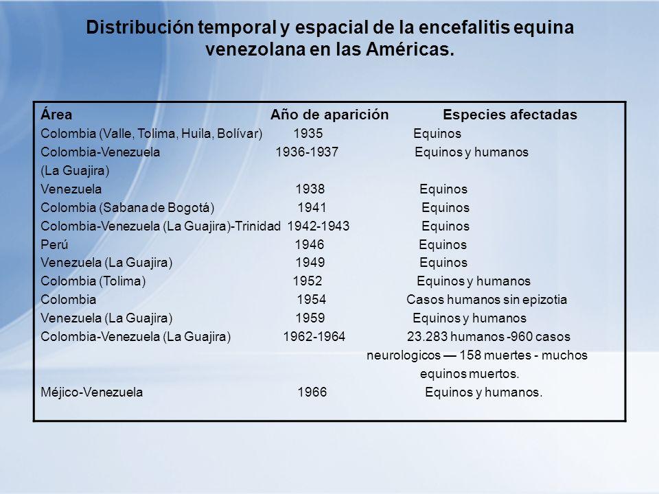 Colombia (Costa Atlántica, Valle del 1967 220.000 personas afectadas y 104.000 Magdalena equinos muertos en Colombia Colombia-Venezuela (La Guajira) 1968 1.077 casos humanos 155 casos neurológicos- 2 muertes en humanos y muchas no cuantificadas en equinos Colombia, Venezuela, Perú, Ecuador, 1969 30.000 caso humanos- 310 muertes en Salvador, Guatemala, Honduras, humanos-27.000 equinos muertos Nicaragua, Méjico.