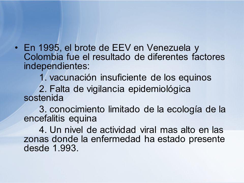 En 1995, el brote de EEV en Venezuela y Colombia fue el resultado de diferentes factores independientes: 1. vacunación insuficiente de los equinos 2.