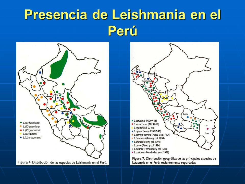 Presencia de Leishmania en el Perú