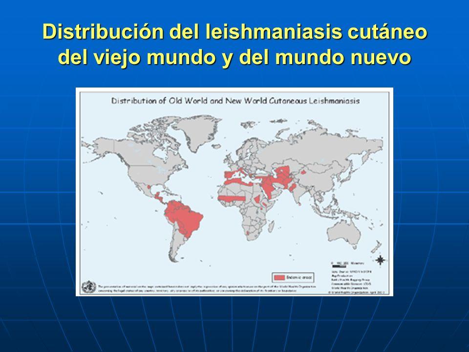 Distribución del leishmaniasis cutáneo del viejo mundo y del mundo nuevo