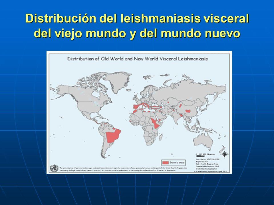 Distribución del leishmaniasis visceral del viejo mundo y del mundo nuevo